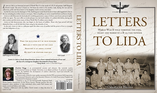 Letters to Lida